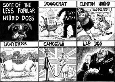 dogcartoon.jpg